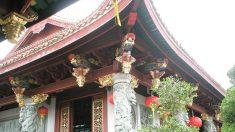 O monge que germinou flores de lótus em uma amoreira