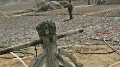 """Provérbio: """"Cavando um poço quando se está sedento"""""""