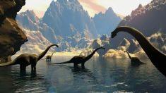 Curso Dino-101 permite estudar os Dinossauros pela internet