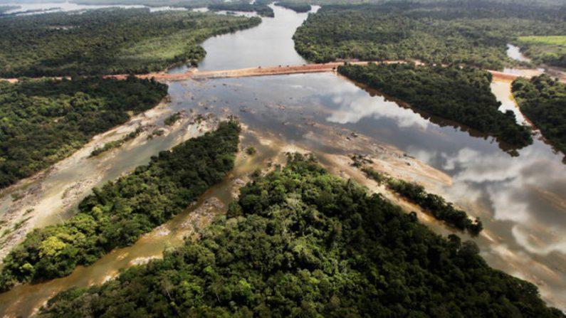 Ministério do Meio Ambiente suspende operações na Amazônia e Pantanal