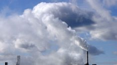Poluição do ar está entre principais causas ambientais de câncer, mostra estudo da ONU