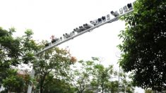 Dezenas de câmeras de vigilância num cruzamento em Shanghai, China
