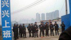 Desespero, suicídios e revoltas dos camponeses na China