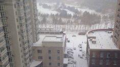 Fortes tempestades de neve atingem nordeste chinês