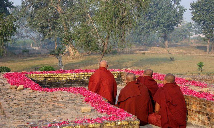 Histórias budistas: A agonia de um cultivador