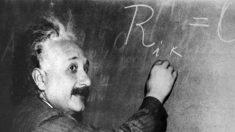 O corpo caloso do cérebro de Einstein: Uma pista de sua inteligência