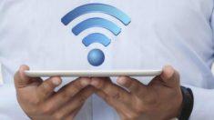 Radiação Wi-fi danifica saúde e meio ambiente, apontam pesquisas