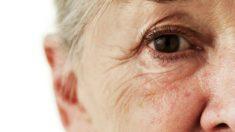 Treino de memória para idosos acontece no SESC Carmo