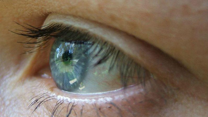 Compreenda sua visão e torne seus olhos saudáveis novamente – Parte 2