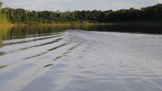 Projetos de carbono no Acre ameaçam direito à terra