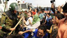Oficiais chineses roubam fazendas e prendem agricultores por protestar