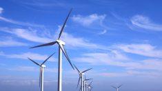 Tribunal francês manda desmontar torres eólicas: prejudicam o homem e a natureza