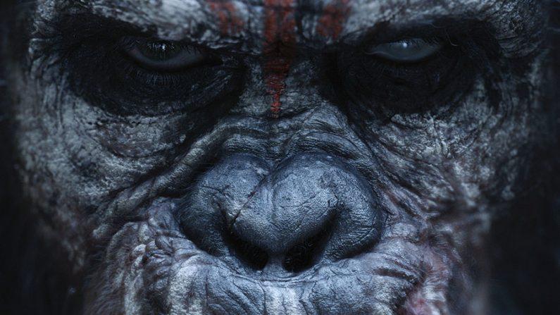 Novo trailer do filme 'Planeta dos Macacos: O Confronto'