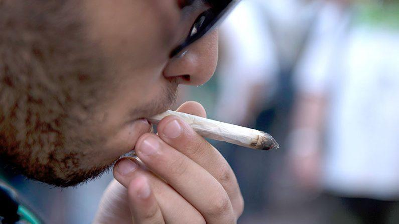 Estudos indicam que legalização da maconha traz sérios problemas sociais