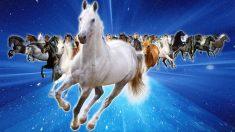 O que os chineses dizem sobre pessoas nascidas no Ano do Cavalo