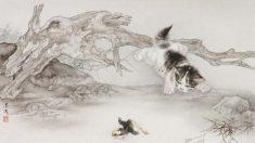 Mi Chunmao pinta animais com realismo e graciosidade ao estilo chinês