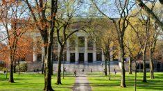 O escândalo de Tar Heel e o mito da universidade