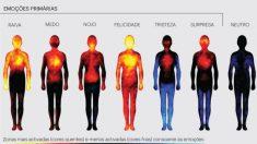 Cientistas registram atividade das emoções no corpo humano