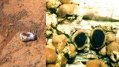 NASA investiga misteriosa rocha em marte