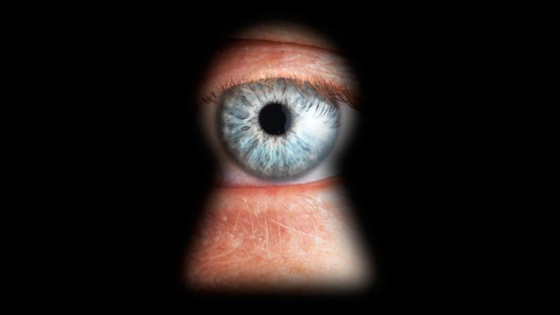 Liberdade e privacidade na internet