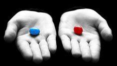 A escolha entre a verdade e a ilusão de felicidade