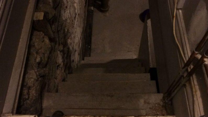 Um objeto incrível foi encontrado no sótão de um jovem
