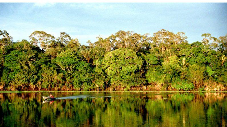 Fundo financiará plano ambiental envolvendo Brasil e mais quatro países