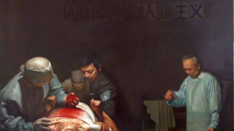 Parlamento de Viena condena a extração forçada de órgãos na China