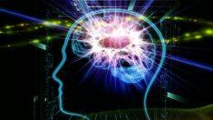 Campo entre partículas é influenciado pela mente humana, diz físico