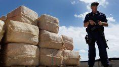 Consumo de cocaína declina pela metade nos EUA, mas maconha cresce