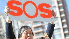 Políticos canadenses pedem a libertação de prisioneiro chinês