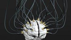 Provas revelam que CIA fazia experimentos para controle de mentes