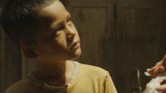 Assista vídeo sobre altruísmo e gratidão que faz todo mundo chorar