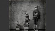 Imaginação e amor: em fotos, pai registra amizade da filha com gatos