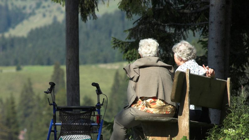Terapia genética restaura a memória de cobaias com Alzheimer