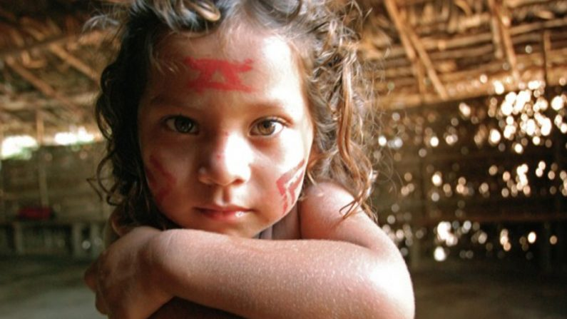 Google Earth pode ajudar a preservar tribos índigenas intocadas