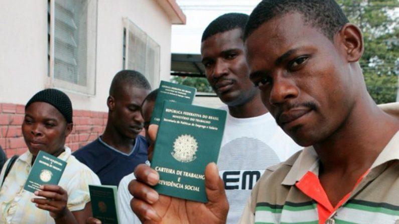 Indícios de que haitianos podem votar nas eleições de 2014