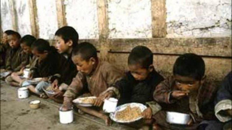ONU pede ajuda humanitária de US$ 120 milhões para Coreia do Norte