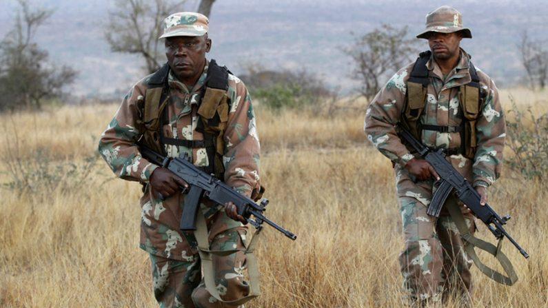 Exército moçambicano e 'Renamo' intensificam confronto no país
