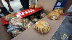 Vítimas de tufão recebem pão mofado e cobertores na China