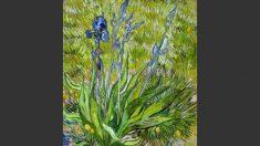 Van Gogh, um ilustre pintor entusiasmado por flores