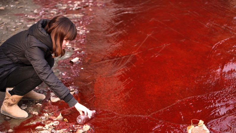 A catástrofe ambiental na China