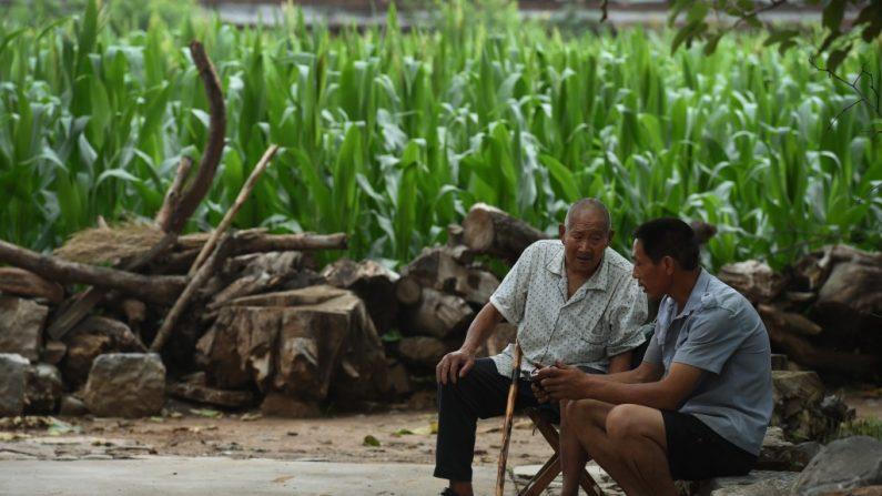 Suicídio de idosos dispara no meio rural da China