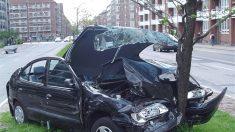 O sexo do motorista determina o tipo de acidente
