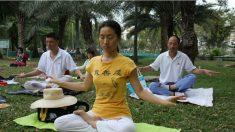 Meditação pode sanar ou prevenir desordens psiquiátricas