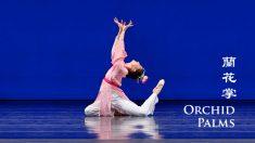 Rebecca Jiang: flexibilidade, determinação e profundidade
