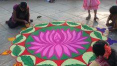 Os significados da flor de lótus na cultura indiana