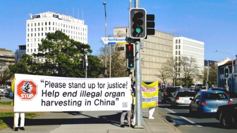 Austrália conscientiza sobre perseguição ao Falun Gong