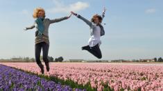 Jardim Keukenhof, na Holanda, abriga paisagismo encantador