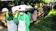 Ebola: MSF rejeitam dinheiro da Austrália e pedem envio de pessoal